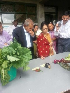 Vegetables grown on the Sai Farm by the Students
